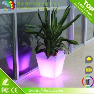 Large Big Size Tall Round LED Illuminated Flower Pot pictures & photos
