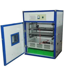 Ce Certificate Fully Automatic 176 Egg Incubator for Quail Eggs pictures & photos