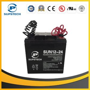 Deep Cycle Lead Acid Battery 12V 24ah pictures & photos