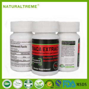 Superfood Increase Potency Maca Capsules with Herbal Extract