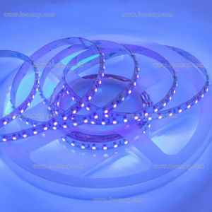 Super bright 80lm/w Waterproof SMD3528 LED Strip for Outdoor Use pictures & photos