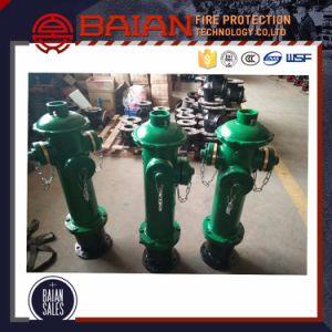 Pillar Fire Hydrant En 14384 Type C pictures & photos