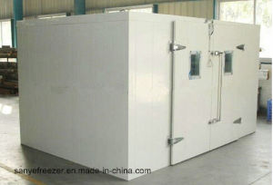 Refrigeration Freezing Room, Cold Room, Cold Room Refrigeration Unit pictures & photos