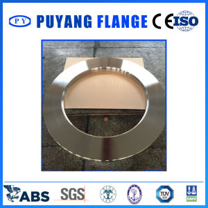 Plate Ring Stainless Steel 1322*843*54 F304 pictures & photos