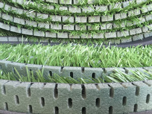 PE Foam for Artificial Grass, Synthetic Turf, Football Grass pictures & photos