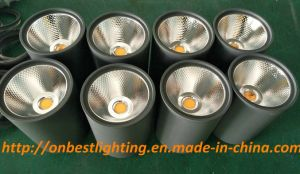Hot Sales LED Light 12W LED Ceiling Light in IP65 pictures & photos
