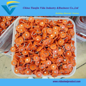 "3000PCS Bucket 3 "" *12gausa Plastic Cap Nails pictures & photos"