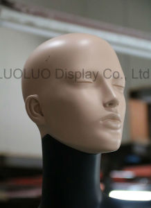 ODM Realistic Female Mannequin with Wear Make-up 1137 pictures & photos