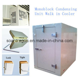 Monoblock Condensing Unit Walk in Cooler pictures & photos