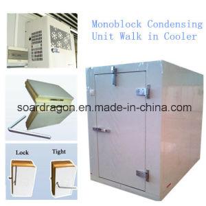 Monoblock Condensing Unit Walk in Cooler pictures & photos