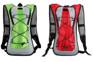 Customized Hiking Cycling Hydration Water Bag Computer Nylon Backpack pictures & photos