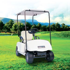 China Manufacturer Supply Single Seat Electric Golf Buggy (DG-C1) pictures & photos