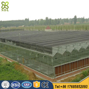 Galvanized Steel Structure Glass Greenhouses for Vegetables pictures & photos