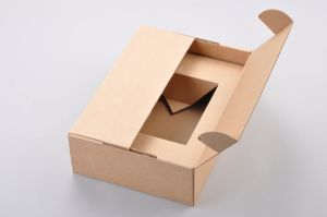 Kraft Paper Folding Box with Insert/Kraft Folding Box pictures & photos
