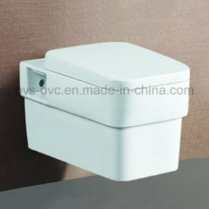 China Manufacturer Wall-Hung Toilet Bathroom Fittings Manufacturer pictures & photos