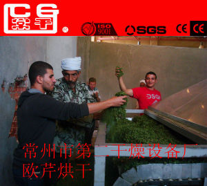 Industrial Fruits and Vegetables Drying Machines for Different Needs pictures & photos