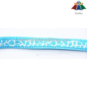 Hot-Sale High-Quality Multi Color Printed Polyester/Nylon Leash & Collar with Small Bell pictures & photos