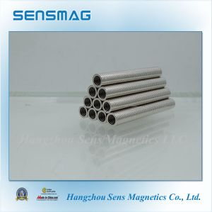 Common Product Permanent NdFeB Ring Magnet for Motor, Speed Sensor pictures & photos