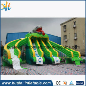 Giant Inflatable Slide, Inflatable Lizard Water Slide for Sale pictures & photos