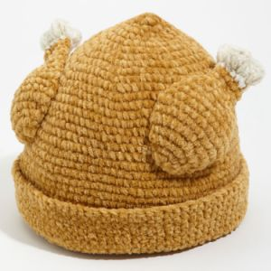 Fried Chicken Style Knit Hat pictures & photos