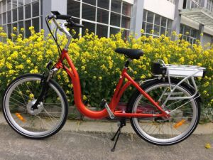 USA Market Electric Bicycle Battery Operated Ebike for Promotion pictures & photos