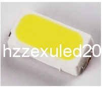 Waterproof 3014 SMD LED Diode