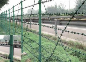 PVC Coated Green Barbed Wire Fence/ Prison Fence (XM-B1) pictures & photos