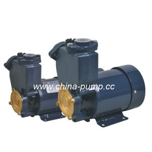 PS Self-Priming Peripheral Pump PS-126) pictures & photos