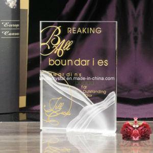 K9 Book Sahpe Crystal Souvenir Award