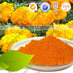 Natural Pigment Food Coloring Plant Extract Lutein Powder pictures & photos