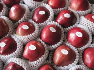 Huaniu Apple Corp/ Red Chinese Apple pictures & photos
