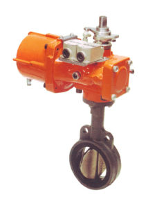 Valve Pneumatic Actuators