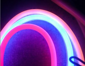 LED Neon Soft Light (CE,RoHS)