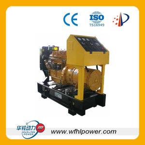 Ricardo Diesel Generator Set (RICARDO) pictures & photos