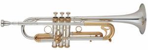 Trumpet (EVA-782)