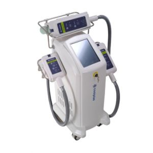 Body Slimming Effective Beauty Machine Coolplas Cryolipolysis Fat Freezing pictures & photos