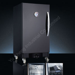 Free Standing Electric Smoker (YCG0001)