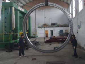 External Gear-Slewing Ring Bearing for Welding Machinery (131.50.4500) pictures & photos