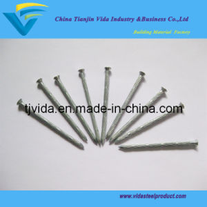"E. G Bamboo Concrete Nails (1/2""-7"") pictures & photos"