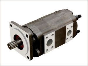 Parker/Commercial/Permco Gear Pump Gear Motor (P50/P51) pictures & photos