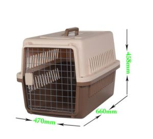Medium Size Plastic Dog Carrier Box