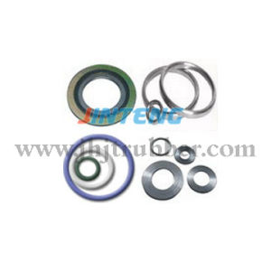 ASME PTFE Materials Spiral Wound Gasket (Carbon steel Outer Ring) pictures & photos