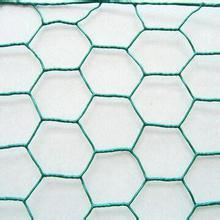 China Supplier Anping Made Hexagonal Wire Netting pictures & photos