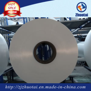 12D/7f China SD Nylon 6 Filament Yarn pictures & photos