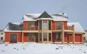 Jilin Project- W2688 pictures & photos
