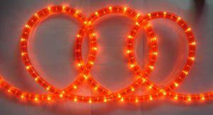Neon Light (SRR-2W) pictures & photos