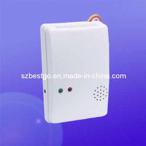 Natural Gas Detector, Gas Alarm, Gas Leak Alarm (BT-402)