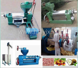 Factory Price Mini Oil Press Machine / Oil Mill for Sale pictures & photos