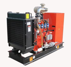 30kw Natural Gas Generator/Natural Gas Genset/ Natural Gas Cogeneration pictures & photos