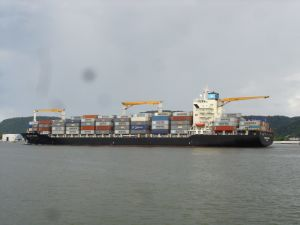 Shipping/Ocean Freight/Logistics From All Ports of China to Rotterdam/Netherlands pictures & photos